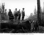 Crew at loading site, Ward-Sargent Timber Company, Ocosta, ca. 1928