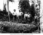 Loggers in the woods, camp 15, North Western Lumber Company, near Vesta, n.d.