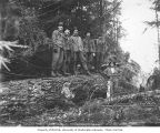 Loggers in the woods, Wynooche Timber Company, probably in Grays Harbor County, ca. 1921