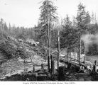 Loading site near logging camp 1, Wynooche Timber Company, probably in Grays Harbor County, ca....