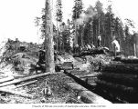 Loading site, with loggers on log raised over railroad flatcars, camp 15, North Western Lumber...