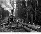 Crew with donkey engine beside skid road, Wynooche Timber Company, near Montesano, ca. 1921