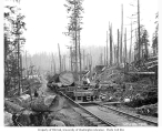 Flatbed moving cars with logs on railroad tracks, Ebey Logging Company, ca. 1917