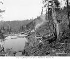 Wynooche Timber Company's railroad logging camp 3 and log holding pond, near Montesano, ca. 1921