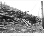 Logging crew and cold deck, Eatonville Lumber Company, ca. 1929