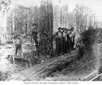 Loggers in the woods, camp 1, Simpson Logging Company, Mason County, ca. 1924