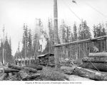 Loading site with crew, large donkey engine and spartree, camp 4, Polson Logging Company, near...