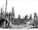 Loggers in the woods, camp 14, Polson Logging Company, near Humptulips, n.d.