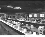 Mess hall interior showing pastries and breads on dining tables, Greenwood Logging Company, ca....