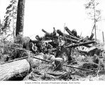 Loggers on cold deck, possibly at camp 14, Polson Logging Company, near Humptulips, n.d.