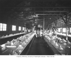 Mess hall interior and crew, Greenwood Logging Company, ca. 1930