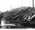 Loggers sitting on cold deck, Coats-Fordney Lumber Company, near Aberdeen, ca. 1920
