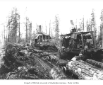 Logging crew loading skeleton railroad cars, two donkey engines in background, Greenwood Logging...