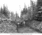 Construction crew building railroad bed, Coats-Fordney Lumber Company, near Aberdeen, ca. 1920