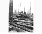 Cold deck and logging crew, Greenwood Logging Company, ca. 1930