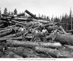 Loggers on cold deck, Hobi Timber Company,  ca. 1928