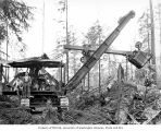 Construction crew with steam shovel, Hobi Timber Company, ca. 1928
