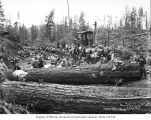 Loggers at lunch in the woods, Greenwood Logging Company, near Aberdeen, ca. 1930