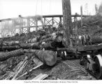 Crew at loading site below railroad trestle, camp 3, Clemons Logging Company, near Melbourne, ca....
