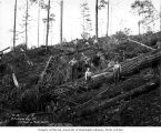 Loggers with felled logs on hillside, Clemons Logging Company, near Melbourne, ca. 1930