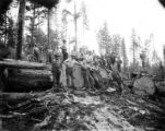 Crew at landing with open donkey engine in background, Bear Creek Logging Company, Svensen, ca....