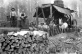 Crew members with donkey engine and horse, Deer Island Logging Company, Deer Island, ca. 1920s