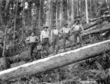 Woods crew posed on log, Long Bell Lumber Company, Ryderwood, ca. 1929