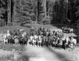 Camp 14 logging teams with horses, Potlatch Forests Incorporated, Idaho, ca. 1935