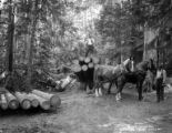 Logging team with horses, Potlatch Forests Incorporated, Idaho, ca. 1935