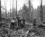 Choker setters in woods, Smith Powers Logging Company, Powers, ca. 1922