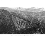 Railroad trestles, Independence Logging Company, ca. 1925