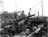 Highlead logging, unidentified location, Washington, 1927
