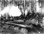 Logging camp crew posing on big fir logs at landing, Washington, 1908