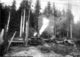 Logging crew loading logs with donkey engine, undentified landing, Washington, 1910