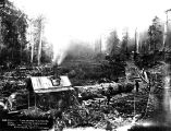 Yarding logs with donkey engine, unidentified logging operation, Washington, 1899