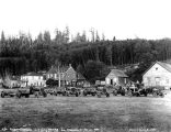 Fleet of early Diamond-T logging trucks, Utsalady, Washington, 1920