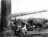 Logging truck and loading boom on a spartree, unidentified logging operation, Washington, 1920