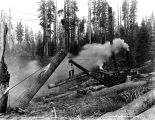 Steel spar skidder at work, unidentified logging operation, Washington, 1916