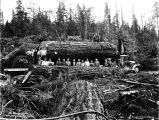 Canyon Creek Logging Co. crew and logging truck carrying load, Granite Falls, Washington,  June...