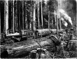 Clear Lake Logging Co. railroad leaving landing with load of logs, Washington, 1908