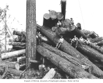 Logging crew atop cold deck, National Lumber and Manufacturing Company, ca. 1920