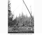 Logging crew and donkey engines, Nelson and Company, n.d.