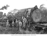 Mason County Logging Company crew and locomotive no. 4 with 23 foot long log, ca. 1932