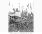 Construction crew with pile driver and trestle under construction, Mutual Lumber Company, Bucoda,...