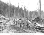 Asian railroad track crew, Pacific National Lumber Company, n.d.