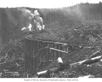 Log trestle, locomotive, and two donkey engines, Pacific National Lumber Company, National, n.d.
