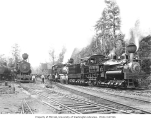Four Mason County Logging Company locomotives, including locomotive no. 6 and three-truck Shay...