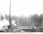 Logging crew standing on raised log, with donkey engine, spar tree, and loaded railroad flatcars,...