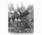 Logging crew on cold deck, St. Paul and Tacoma Lumber Company, n.d.