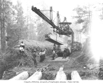 Asian track crew laying railroad track using a track machine, Schafer Brothers Logging Company,...